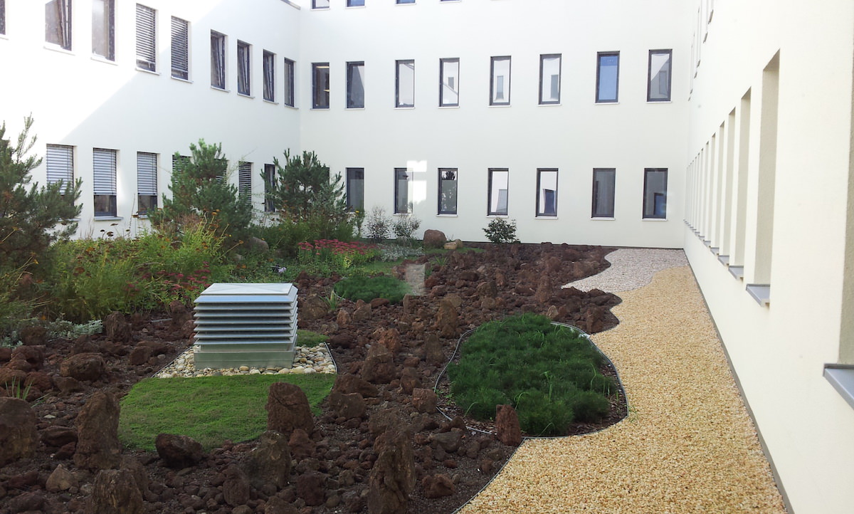 Praca dla lekarzy w Niemczech